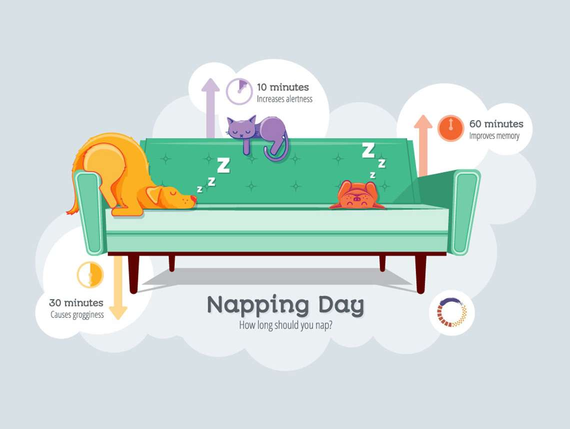 Napping Day 2017