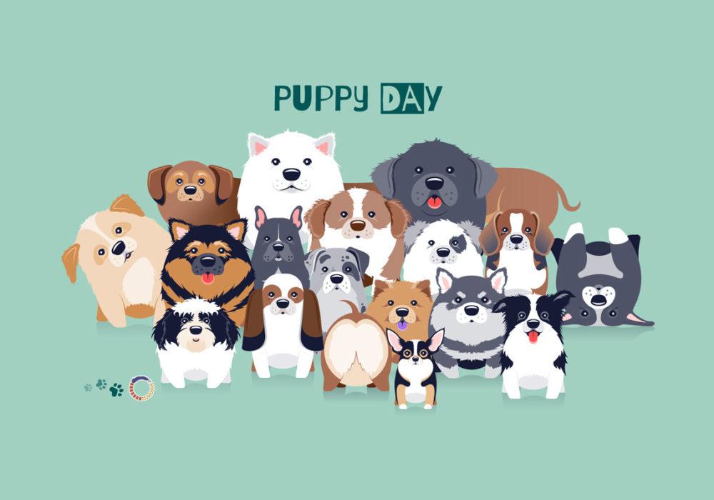 Puppy Day 2016