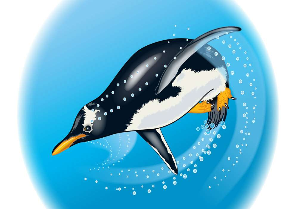 Penguin Propulsion Editorial Illustration
