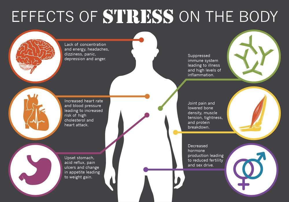 Image result for effects of stress
