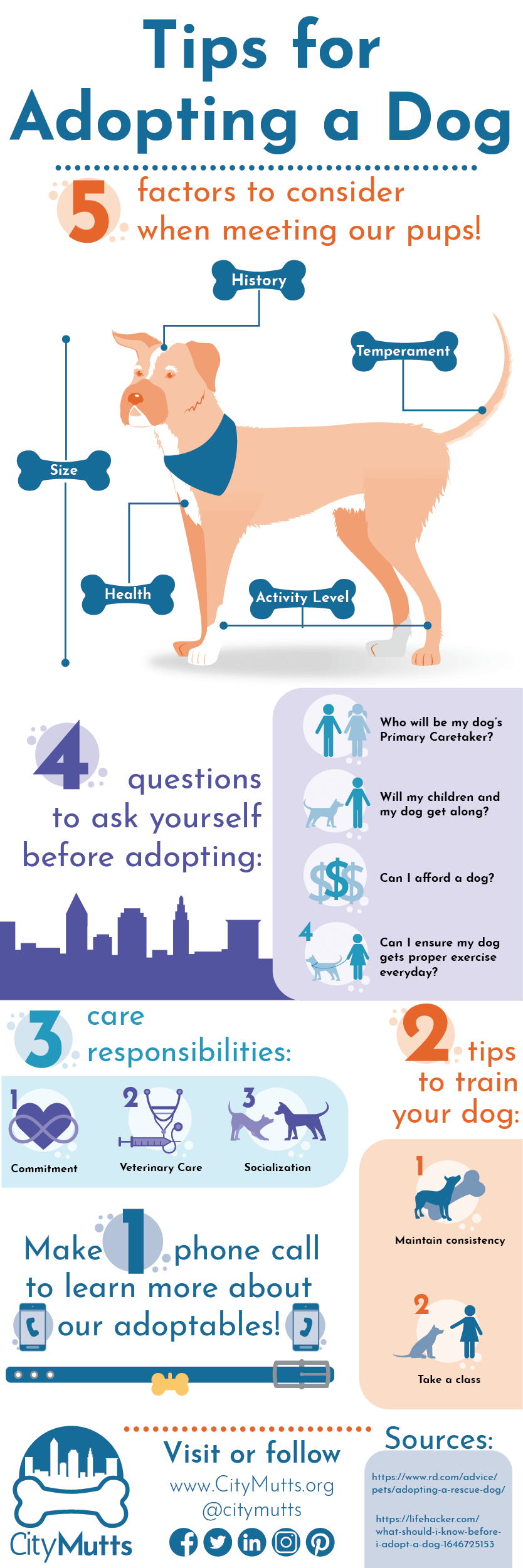 Tips for Dog Adoption Sample Infographic